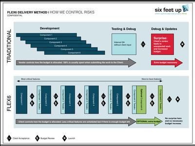 Flex6-Controlling Project Risks