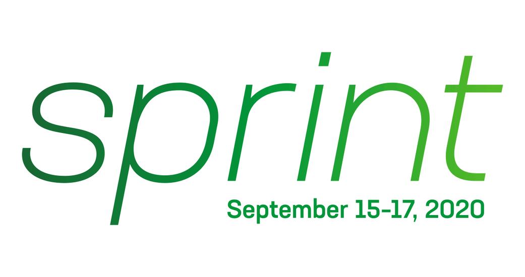 NGINX Sprint 2020 Powered by LoudSwarm